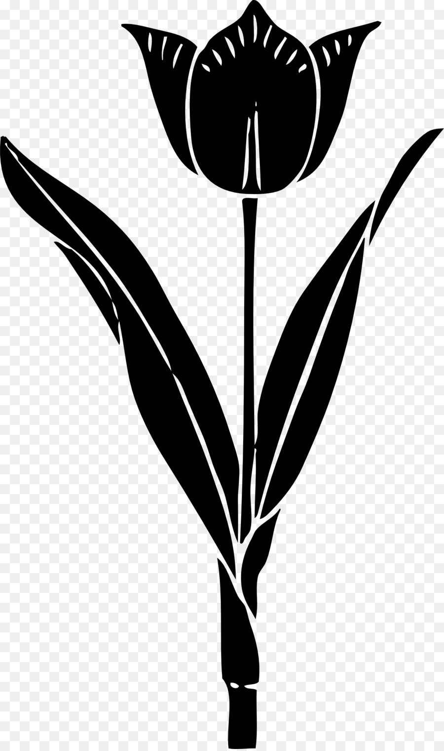 Tulip stem clipart black and wite image transparent library Black And White Flower clipart - Tulip, Silhouette, Flower ... image transparent library
