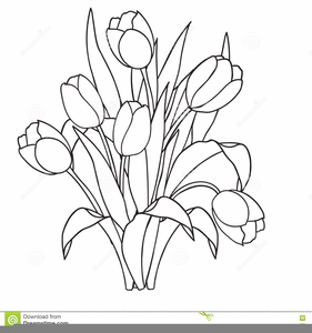 Tulips black and white clipart image transparent Tulips Clipart Black And White | Free Images at Clker.com ... image transparent