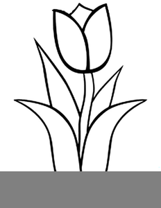 Tulips black and white clipart png Tulips Clipart Black And White | Free Images at Clker.com ... png