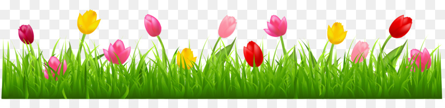 Tulips free clipart svg freeuse Tulip Free Content Clip Art Tulips Clipart Png Download 4268 ... svg freeuse