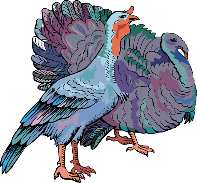 Turkey cage clipart clipart transparent ForgetMeNot: turkeys clipart transparent