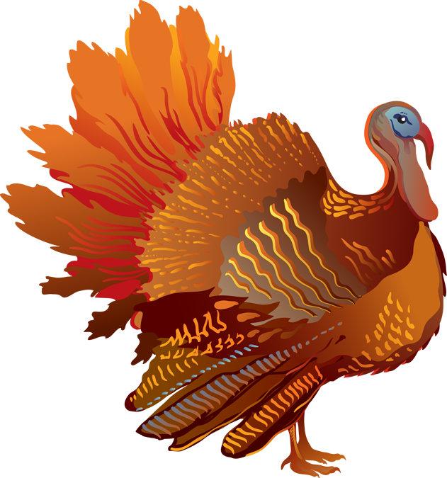 Turkey cage clipart download ForgetMeNot: turkeys download