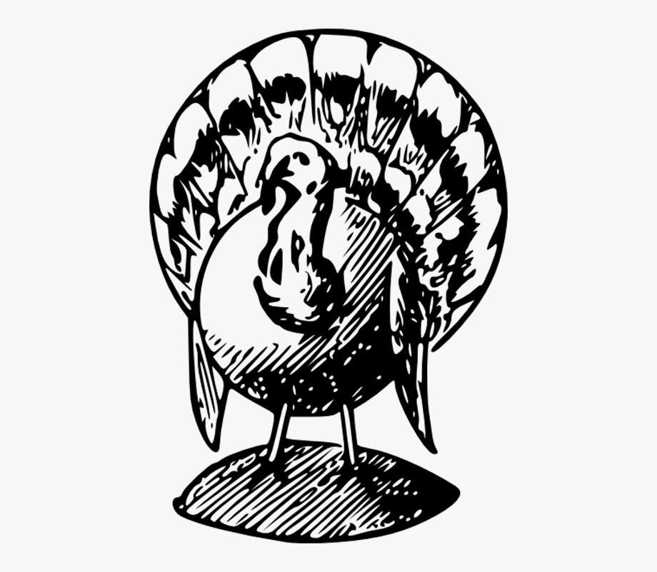 Turkey eating ice cream clipart jpg royalty free library Apple Pie Png Black And White - Black And White Turkeys Clip ... jpg royalty free library