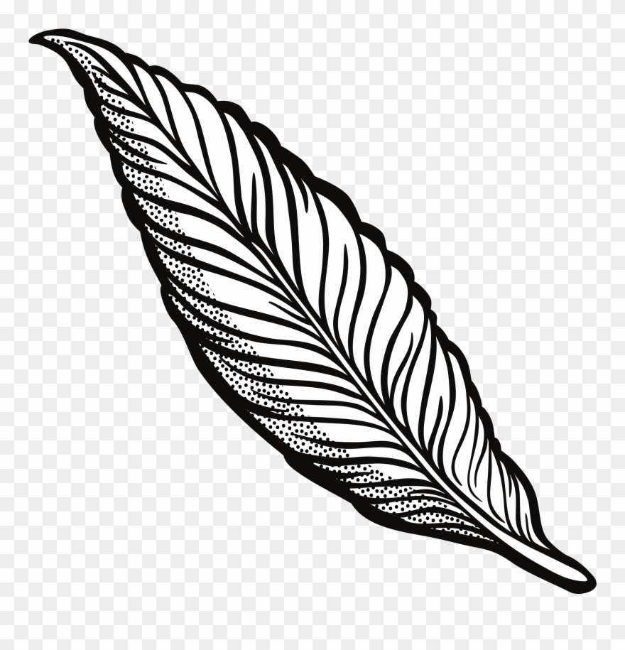 Turkey feather outline clipart svg stock Turkey Feather Clipart Transparent Download Outline ... svg stock