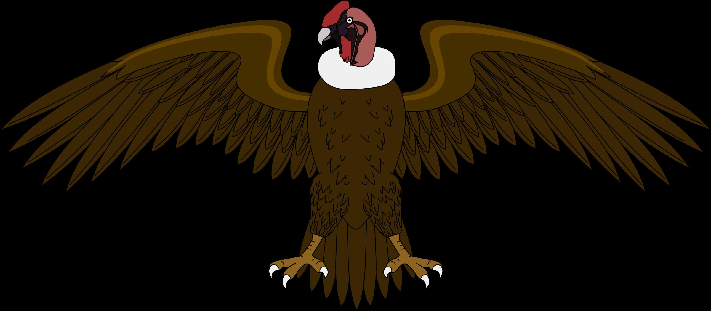 Turkey vulture clipart jpg transparent library Clipart - Condor 2 jpg transparent library