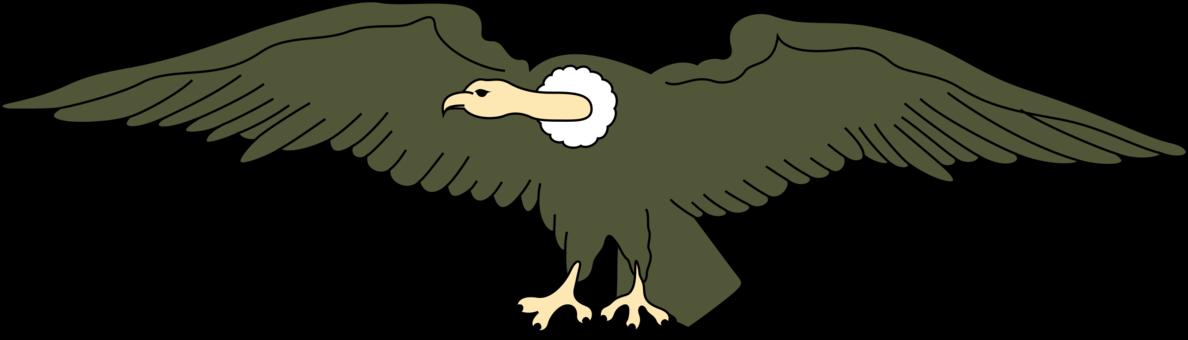 Turkey vulture clipart banner free download Turkey vulture Bird Egyptian vulture Bearded vulture free commercial ... banner free download