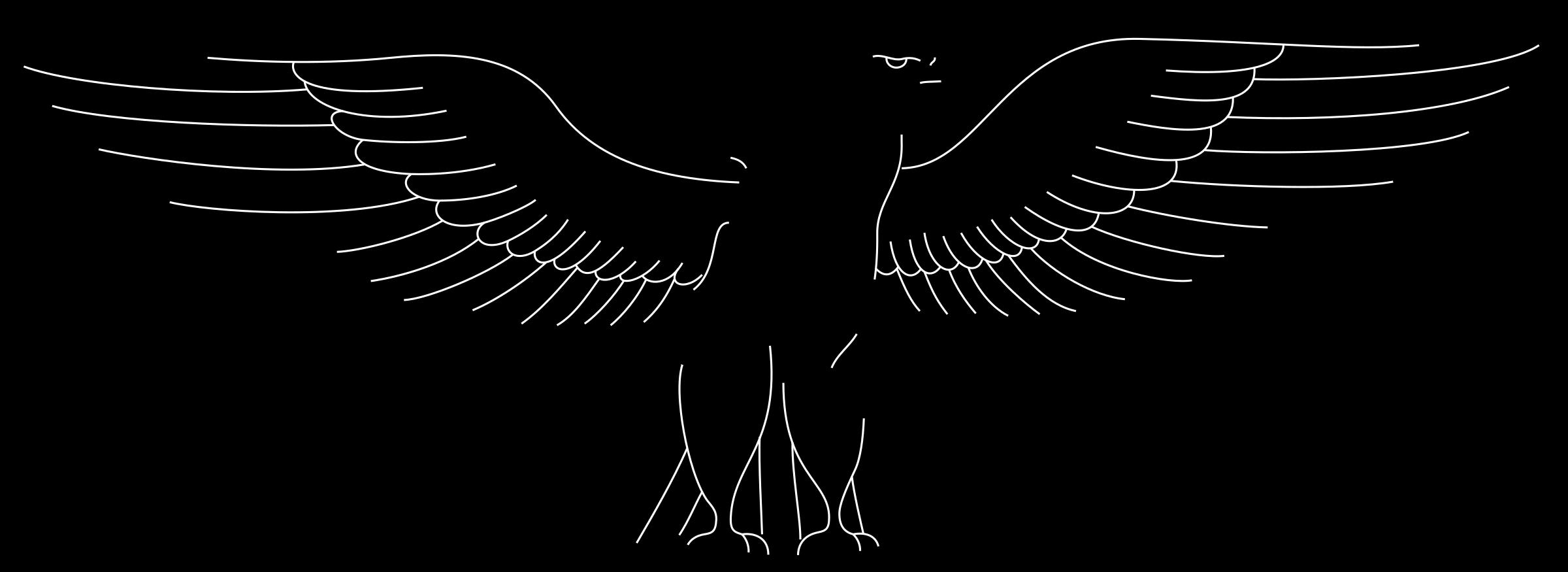 Turkey vulture clipart black and white clip stock Clipart - Black goshawk clip stock