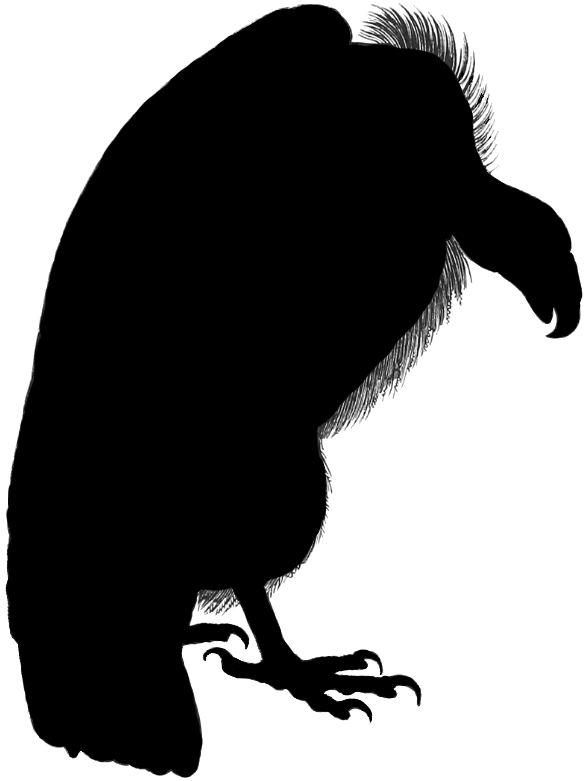 Turkey vulture clipart perched vector library stock silhouette vulture | Vulture Silhouette | Eddie | Halloween ... vector library stock