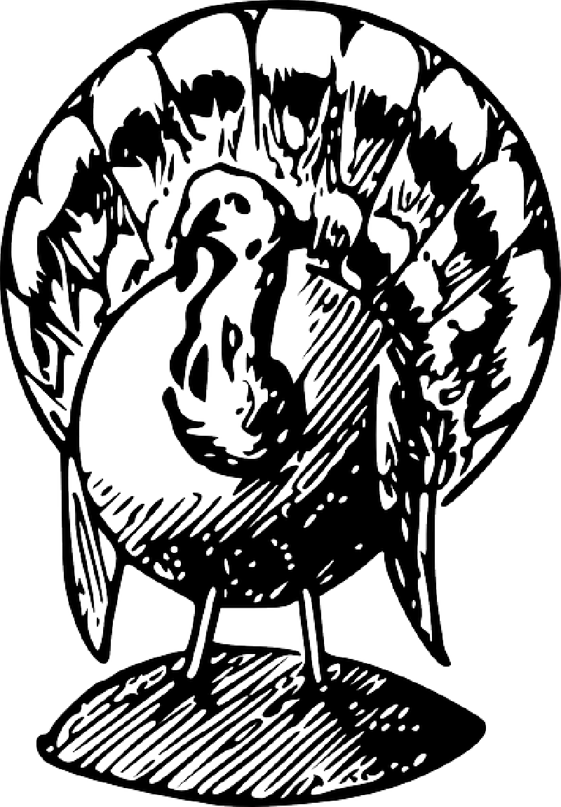 Turkey without feathers clipart black and white free png library download Free pictures GIVING - 16 images found png library download