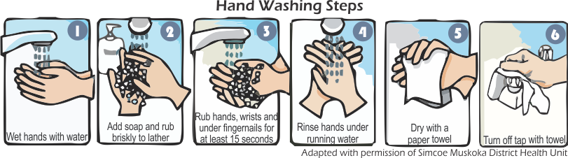 Turn on the water and wet hands clipart png download Patient/Client Safety - Waypoint - 226*811 - Free Clipart ... png download
