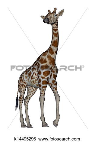 Turning head clipart svg free Stock Illustration of Giraffe turning head k14495296 - Search Clip ... svg free