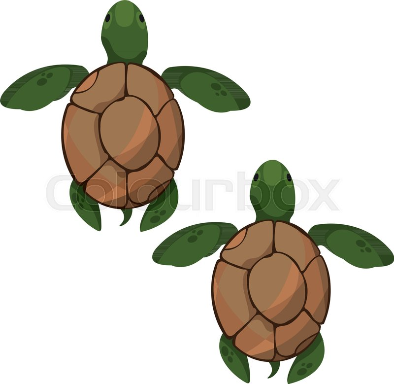 Turtels clipart clipart royalty free stock Sea turtles. Clipart on the marine ... | Stock vector ... clipart royalty free stock