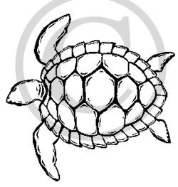 Turtle clipart easy picture freeuse library Hawaiian Sea Turtle Clipart   Clipart Panda - Free Clipart ... picture freeuse library