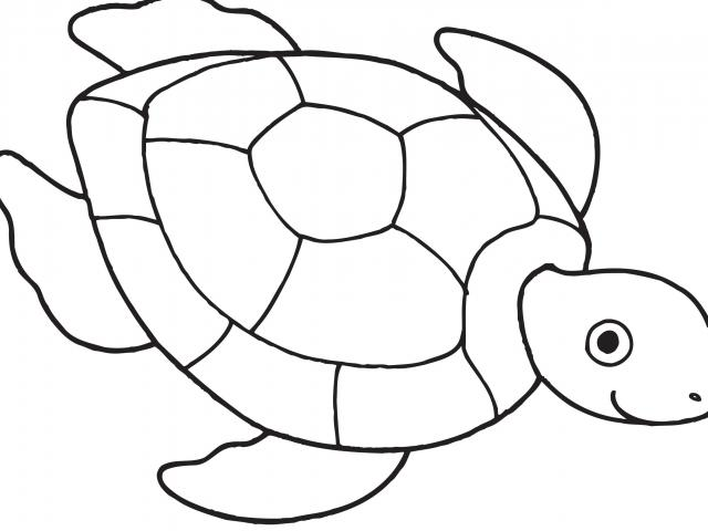 Turtle clipart easy clipart library library Free Sea Turtle Clipart, Download Free Clip Art on Owips.com clipart library library