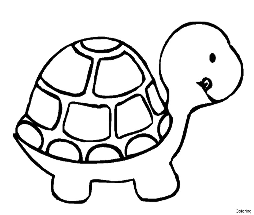 Turtle clipart easy jpg freeuse stock Turtles clipart easy - 195 transparent clip arts, images and ... jpg freeuse stock