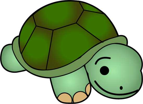 Turtle clipart jpeg graphic free library Clip Art Baby Turtle Clipart - Clipart Kid graphic free library