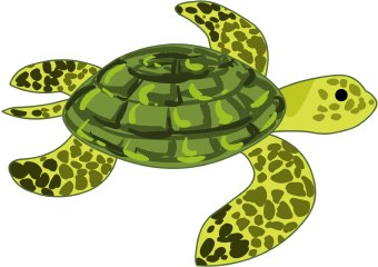 Turtle clipart jpeg clip download Clipart Sea Turtle & Sea Turtle Clip Art Images - ClipartALL.com clip download