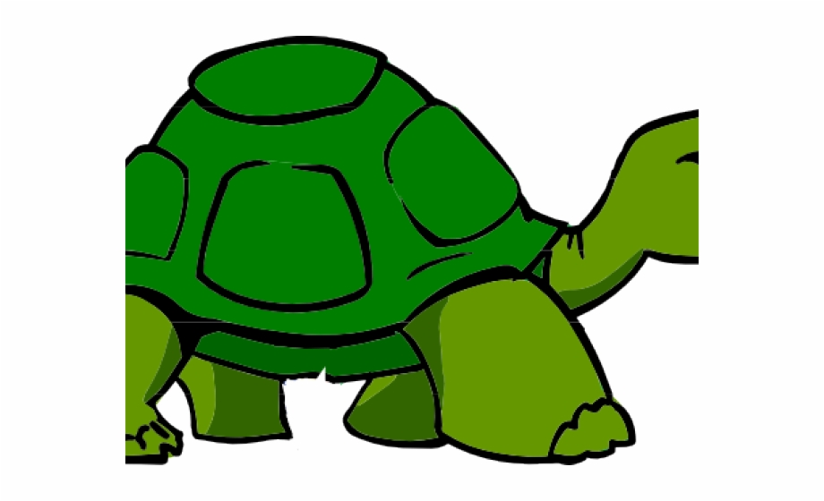Turtle clipart with transparent background jpg library Transparent Background Turtle Clipart Free PNG Images ... jpg library