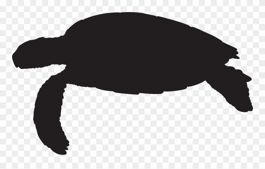 Turtle clipart silhouette clipart freeuse stock Svg Freeuse Library Sea Silhouette Png Clip - Sea Turtle ... clipart freeuse stock