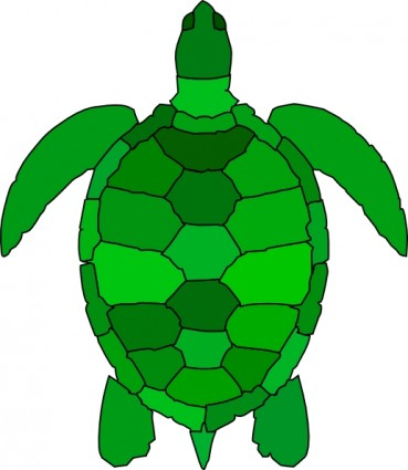 Turtle clipart svg vector transparent download Green sea turtle clip art free vector in open office drawing svg 2 ... vector transparent download