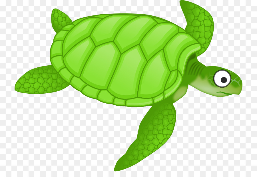 Turtle clipart with transparent background vector royalty free library Sea Turtle Background clipart - Turtle, Green, transparent ... vector royalty free library
