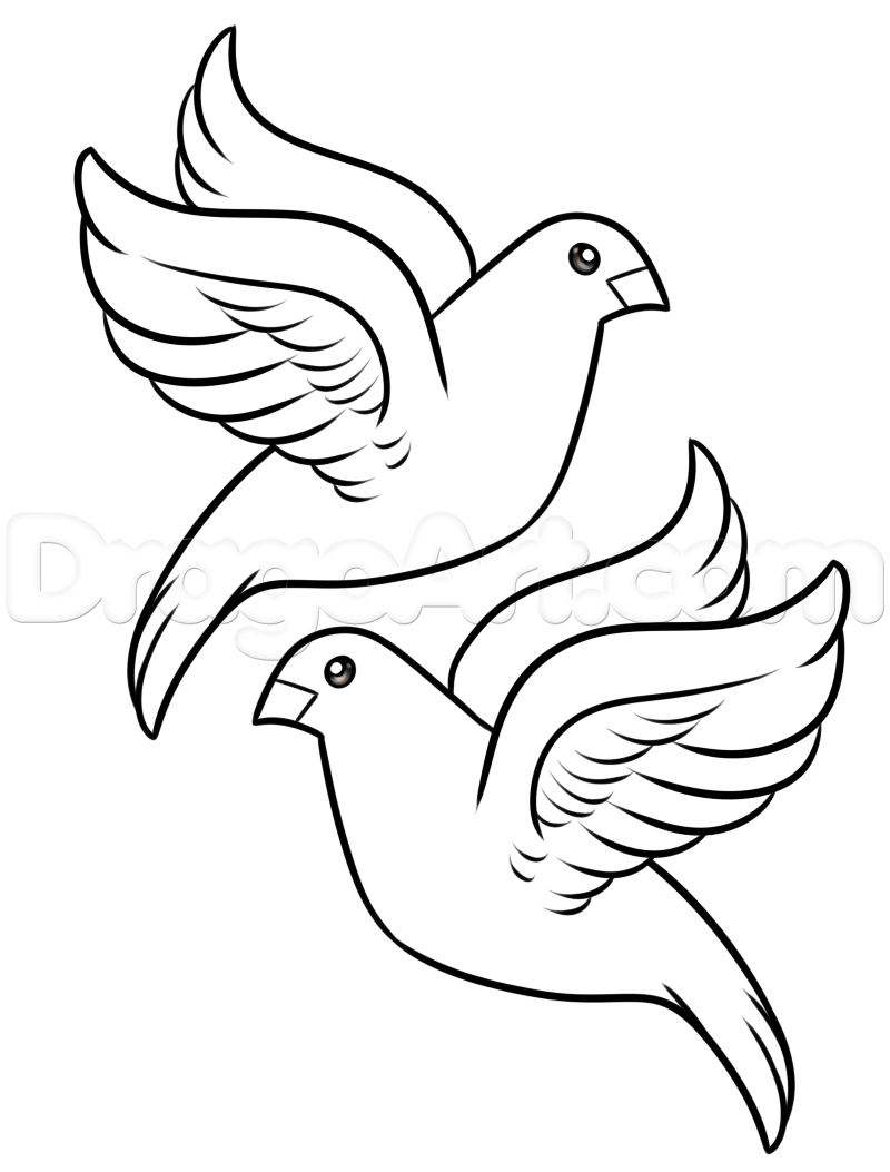 Turtle dove clipart free png library download How to Draw Turtle Doves, Step by Step, Birds, Animals, FREE ... png library download