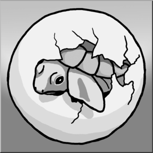 Turtle hatchling clipart library Clip Art: Sea Turtle Hatchling Grayscale I abcteach.com ... library