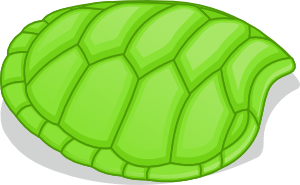 Turtle no shell clipart banner free stock Turtle Shell Clip Art at Clker.com - vector clip art online ... banner free stock