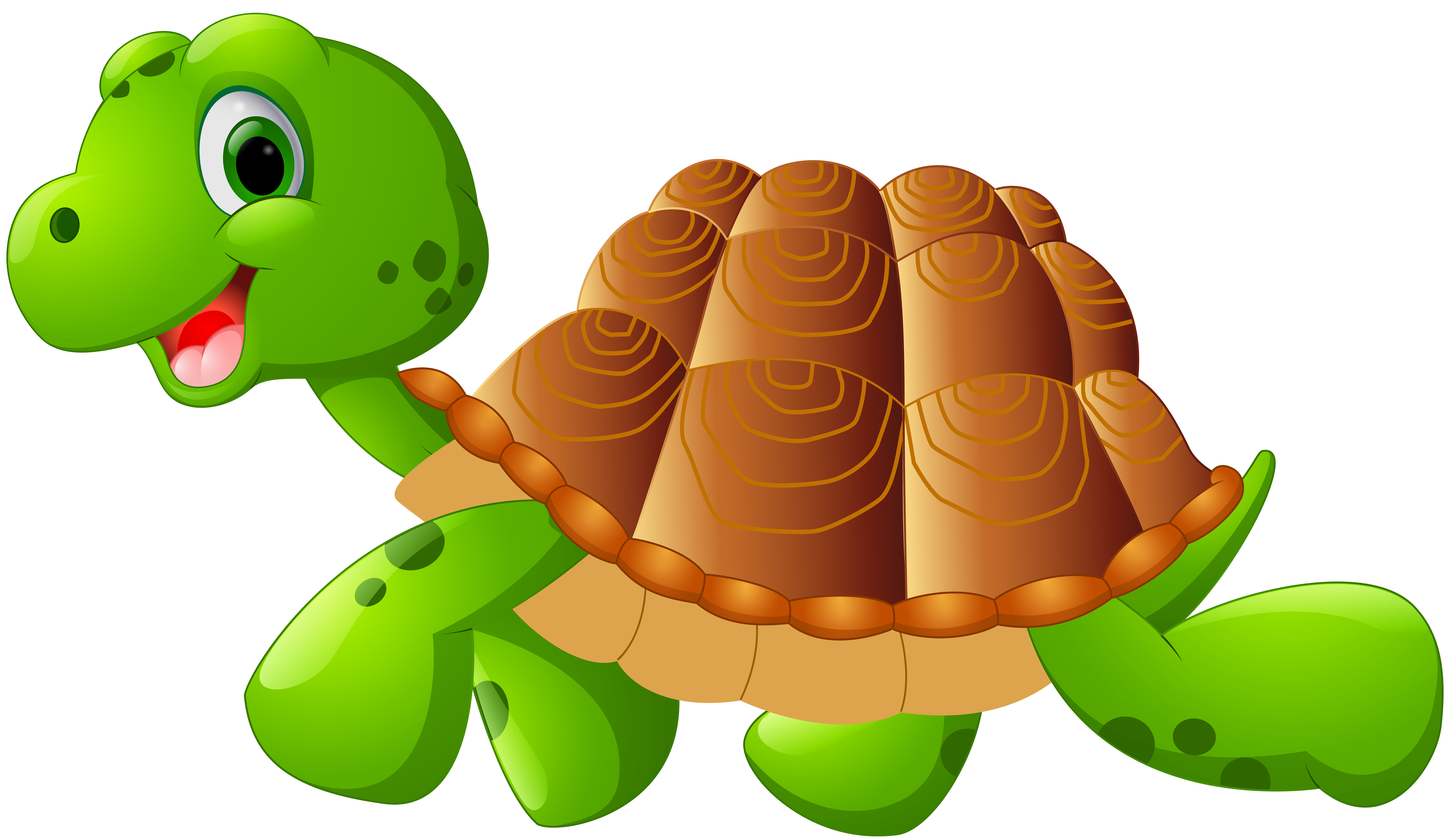 Turtle school clipart banner stock Turtle Cartoon PNG Clip Art Image   Gallery Yopriceville - High ... banner stock