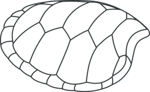 Turtle shell clipart svg jpg free library Turtle Shell Outline Clip Art at Clker.com - vector clip art ... jpg free library