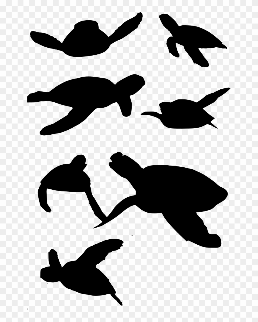 Turtle vector clipart vector transparent stock Download Png - Turtle Vector Clipart (#4077113) - PinClipart vector transparent stock