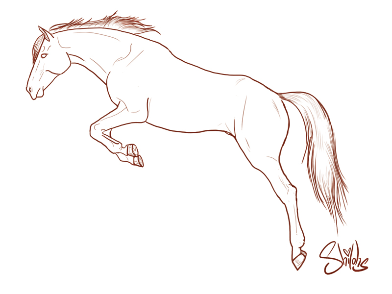 Tweakware digicel clipart png stock Realistic horse lineart deviantart - 15 linearts for free ... png stock