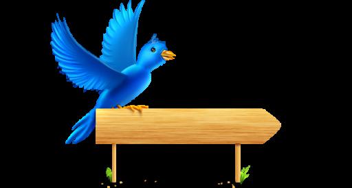 Twitter clipart size clipart transparent Twitter Bird Perch Icon, PNG ClipArt Image | IconBug.com clipart transparent
