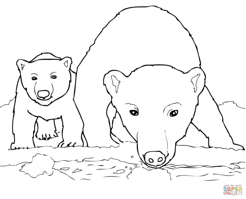 Two bear cubs clipart black clip art royalty free stock Curious Polar Bear Mother and Cub coloring page | Free ... clip art royalty free stock