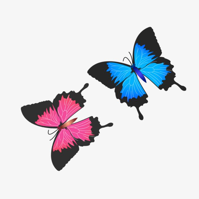 Two butterflies clipart clipart freeuse library Two Butterflies | Sckrapbooking in 2019 | Butterfly clip art ... clipart freeuse library