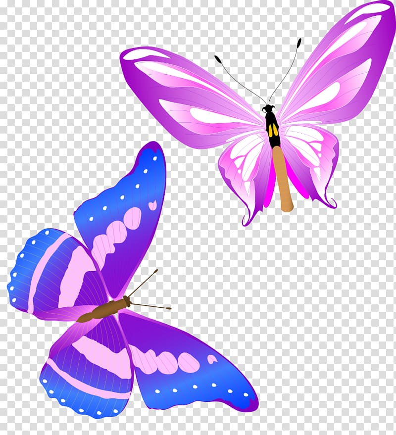 Two butterflies clipart png freeuse download Two butterflies illustration, Monarch butterfly Insect , Fun ... png freeuse download