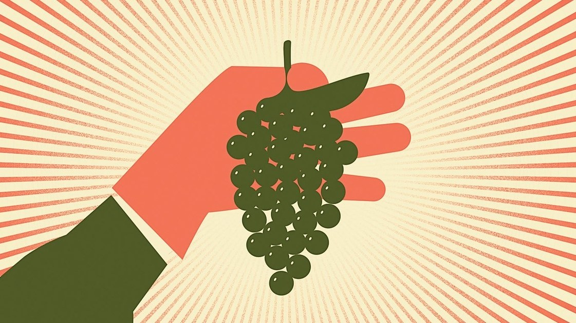 Two men carrying grapes clipart picture freeuse Can Wine Transform China\'s Countryside?   The New Yorker picture freeuse