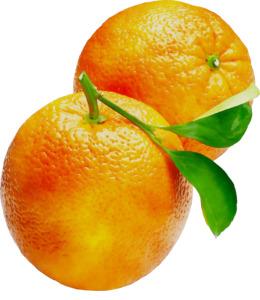 Ugli fruit clipart clip freeuse Ugli Fruit transparent png images & cliparts - About 15 png ... clip freeuse