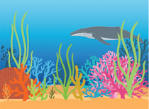 Under ocean clipart picture stock Search Results for coral reef - Clip Art - Pictures ... picture stock
