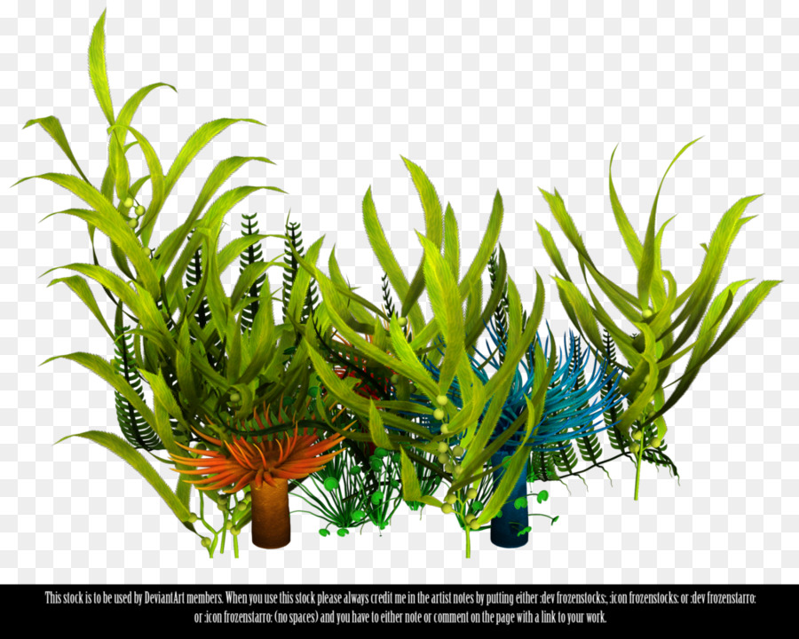 Underwater grass free clipart transparent library Coral Reef Background png download - 1024*819 - Free ... transparent library