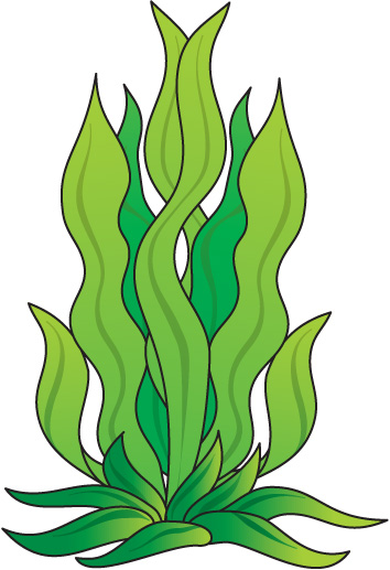 Underwater grass free clipart freeuse download Underwater Cliparts | Free download best Underwater Cliparts ... freeuse download