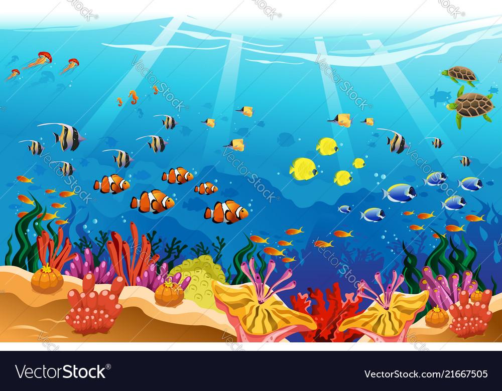 Underwater scene clipart svg library Marine underwater scene svg library