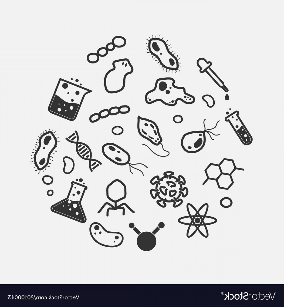 Unicellular clipart black and white png Organism Clipart Vector   CQRecords png