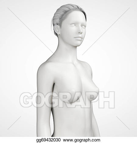 Upper body clipart svg library library Stock Illustration - Female - upper body. Clipart Drawing ... svg library library