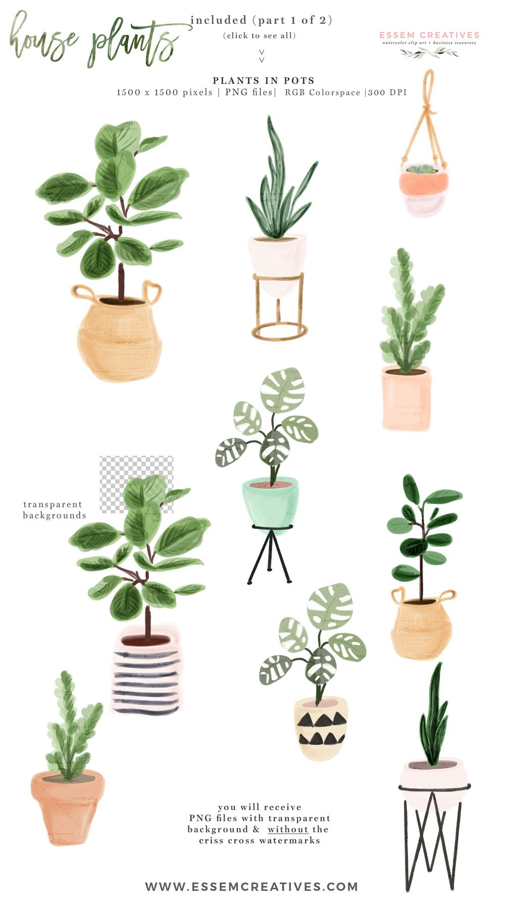 Urban gardens clipart png black and white library Watercolor House Plant Clip Art, Indoor Plants Potted Plant ... png black and white library