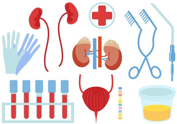 Urology clipart transparent stock Urology Free Vector Art - (2,630 Free Downloads) transparent stock