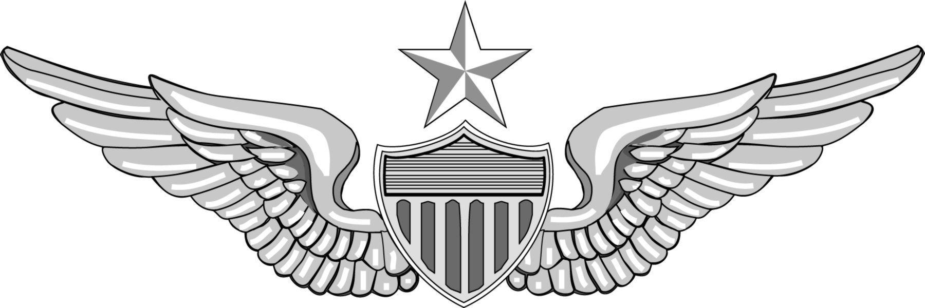 Us army clip art clip art library download U.S. Army Clip Art - Qualification Badges clip art library download
