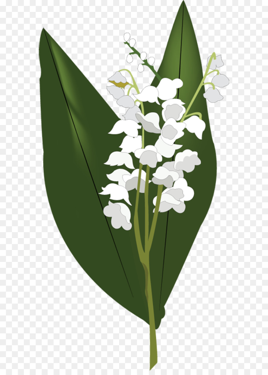 Valley with flowers clipart png black and white Lily Flower Cartoon png download - 640*1246 - Free ... png black and white