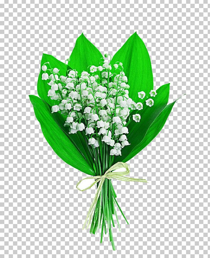 Valley with flowers clipart jpg stock Lily Of The Valley Flower Bouquet Stock Photography Lilium ... jpg stock