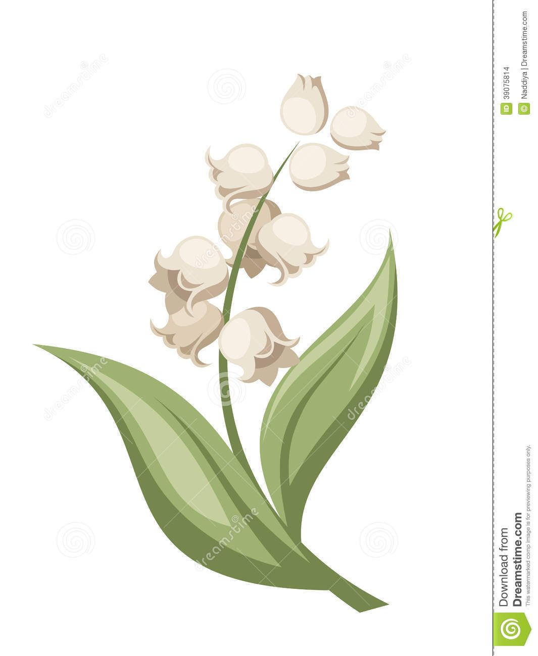 Valley with flowers clipart stock Lily Of The Valley Flower. Vector Illustration. Stock Vector ... stock